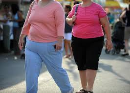 Image result for overweight people